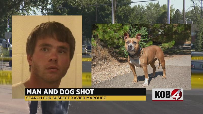 Suspect-shoots-man-and-dog-who-were-out-for-a.jpg